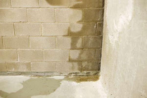 cara-mengatasi-tembok-lembab-dan-basah